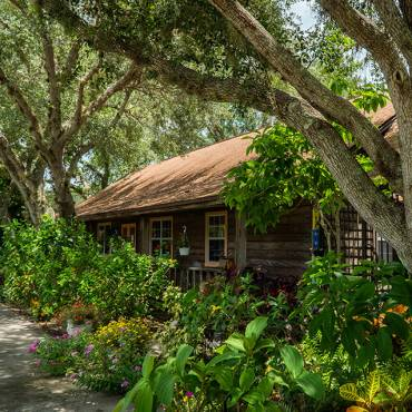 Top Benefites of Wellness Retreats Miami